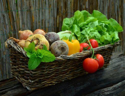 Exigentes ao consumir, vegetarianos já são 14% da população