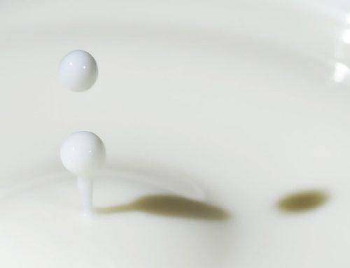 Consumo de leite apresenta mudanças no Brasil